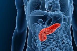 узд підшлункової залози
