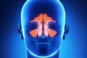 узд носа