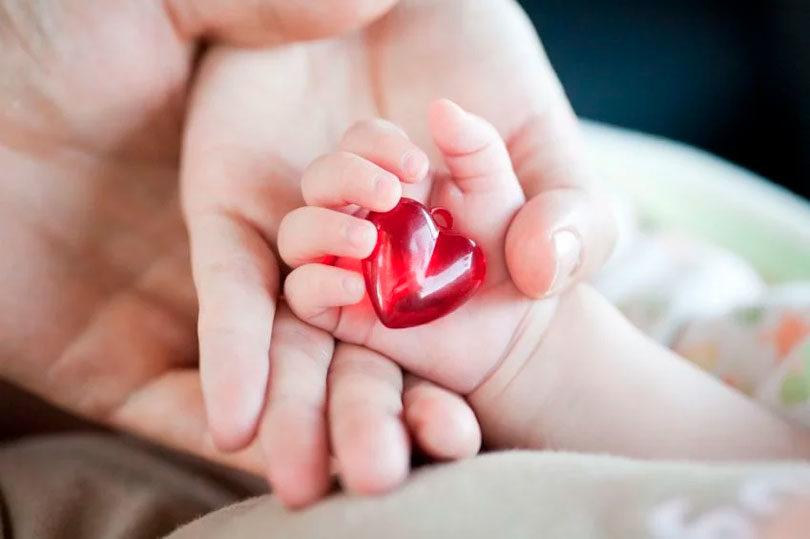 Ультразвукове скринінгове дослідження серця плода.