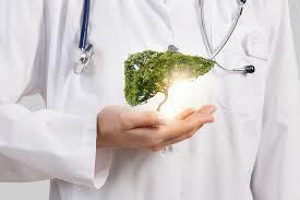 УЗД печінки у клініці Urosvit.